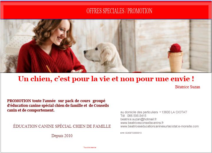 CARTE PROMOTION  : offres promotionnelles