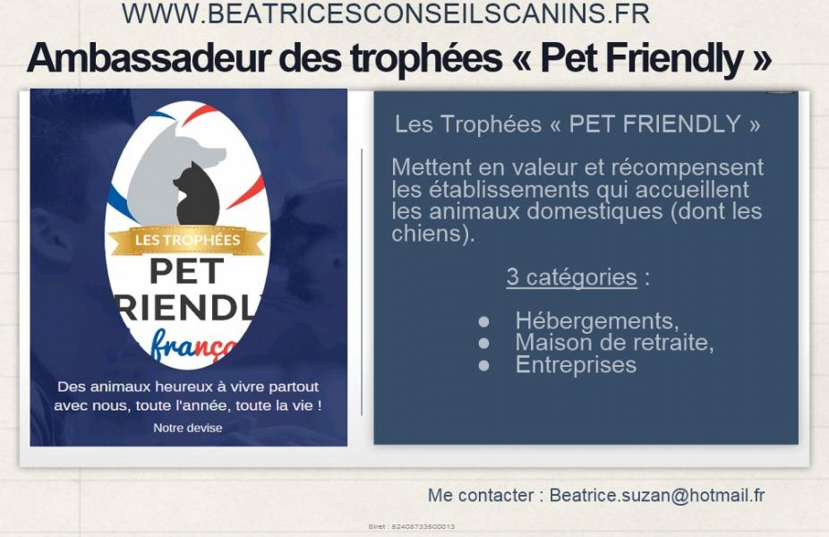 Ambassadeur pet friendly