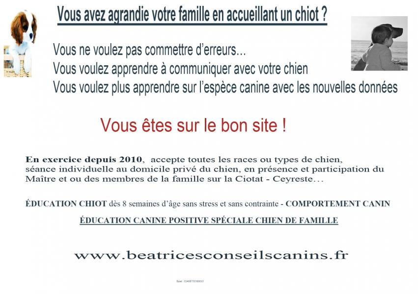Carte education chiot famille