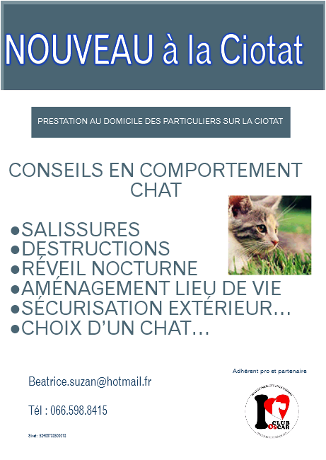 Comportement chat