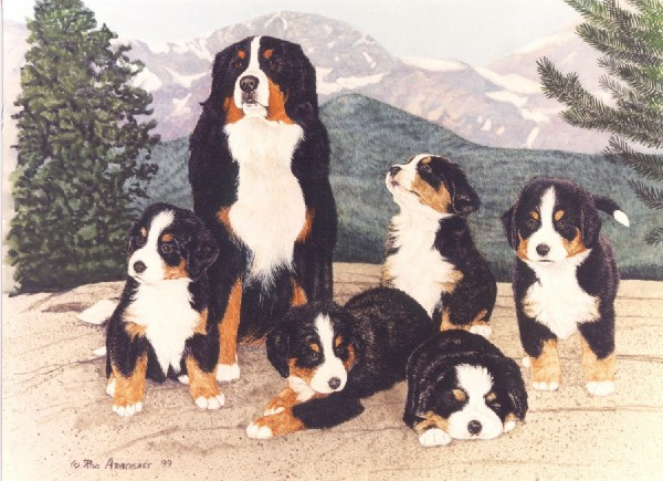 Dog bb famille