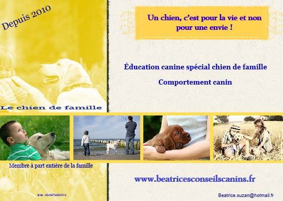 Béatrice 's éducation canine sur la Ciotat