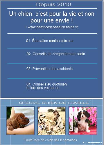 Conseils auprès des particuliers et ou des professionnels pour l'accueil et la prévention des accidents
