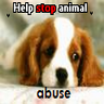 Stop animal abus1